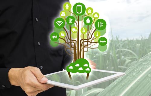 G2@MyPLANT2019 : nuove tecnologie, custodi delle nostre piante